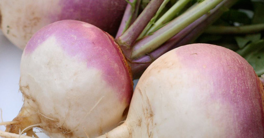 What a turnip can teach us about creative design and marketing